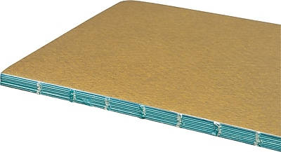 "Moleskine Chapters Journal, Slim Large, Ruled, Tawny Olive, Soft Cover 4-1/2"" x 8-1/4"""