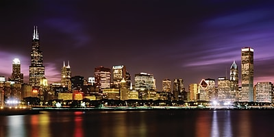 Biggies - Wall Mura l- Chicago Skyline 120