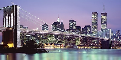 Biggies- Wall Mural- NY Skyline 120
