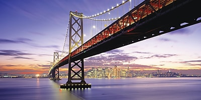 Biggies- Wall Mural -San Francisco Bridge 54