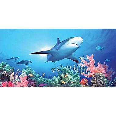Biggies- Wall Mural -Shark Reef 54