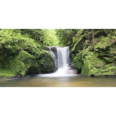 Biggies- Wall Mural -Waterfall 80