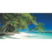 "Biggies- Wall Mural -Beach 54"" x 27"""