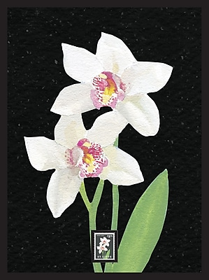 Orchid Framed Wall Art with Postage Stamp