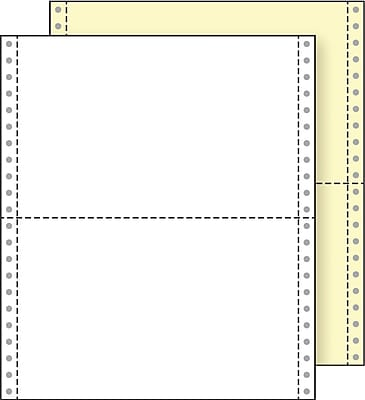 Printworks® Professional 2 Part Blank Computer Paper, 9 1/2