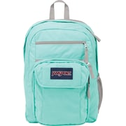 Jansport Digital Student Backpack, Rab/Sylvia