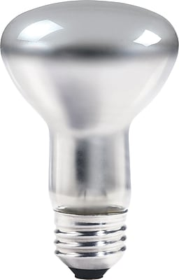Philips® 40W Halogen Light Bulb, BR30, Medium Screw Base, 12/Pack (213595)