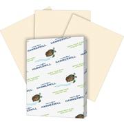 "International Paper Super Premium Paper - For Laser, Inkjet Print - Legal - 8.50"" x 14"" - 20 lb, 500 Carton - Ivory"