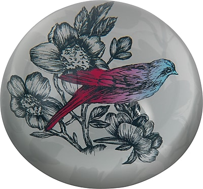Paperchase Paradiso Paperweight, 3.8