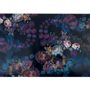 Cynthia Rowley  Wallpaper, Cosmic Black Floral