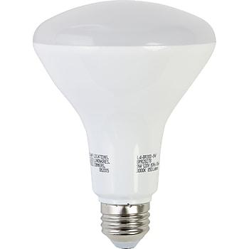Brighton 65w Equiv. LED Dimmable Flood Light Bulb