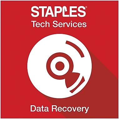 Data Recovery (In-Store)