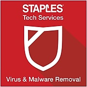 Virus & Malware Removal (in-store only)