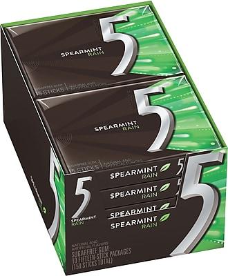 5 Gum Spearmint Rain Sugar-Free Gum, 10 Packs/BX