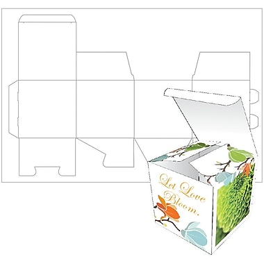 Blanks USA Small Box 2.5x2.5x2.5 100# cover