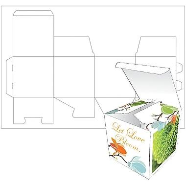 Blanks USA Small Box 2.5x2.5x2.5 14 pt