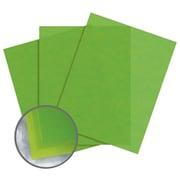 """Glama Natural Colors Paper, 8.5"""" x 11"""", 27#, Kiwi, 2500 Sheets"""
