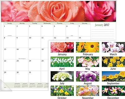 """""AT-A-GLANCE Panoramic Monthly Desk Pad, 2017, 22"""""""" x 17"""""""", Floral (89805 17)"""""" 2127807"