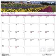 2017 House of Doolittle 12 x 12 Wall Calendar Earthscapes Garden (301)
