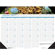 "House of Doolittle, Desk Pad Calendar, 2017, 17"" x 22"", Earthscapes Sea Life (193-17)"