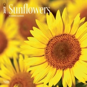 2017 Sunflowers Square 12x12