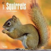 2017 Squirrels Mini 7x7