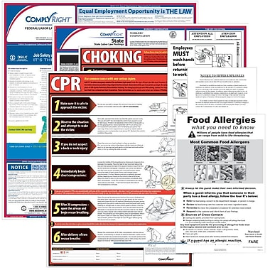 ComplyRight™ Federal & State Restaurant Poster Kit, NY - New York