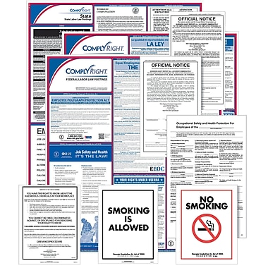ComplyRight Federal (Bilingual), State & Public Sector (English) Poster Set - New York