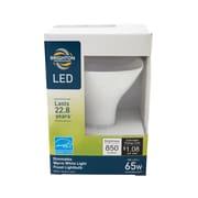 Brighton Professional™ 65w Equiv. LED Dimmable Flood Light Bulb