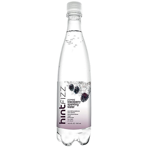 Hint Fizz Blackberry Infused Sparkling Water, 16.9 Oz., 12 Pack