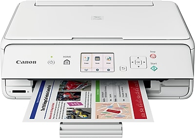 Canon® PIXMA® TS5020 Wireless Multifunction Color Inkjet Printer White (1367C022)