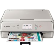 Canon PIXMA TS6020 Wireless Inkjet All-In-One Printer, Gray (1368C042)