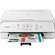 Canon® PIXMA® TS6020 Wireless Multifunction Color Inkjet Printer, White