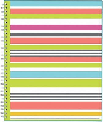 2017-2018 Today's Teacher by Blue Sky 8.5x11 Planner, Stripes (100329)