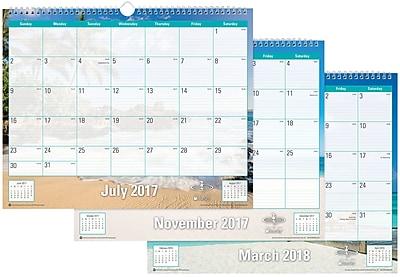 2017-2018 Blue Sky 15x12 Wall Calendar, Endless Summer (102108)