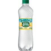 POLAND SPRING Brand Sparkling Natural Spring Water, Lemon 16.9-ounce plastic bottles (Total of 24)