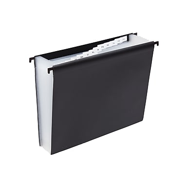 Staples® Hanging Poly Expanding File, Letter, Jan-Dec Index, 12 Pockets, Each