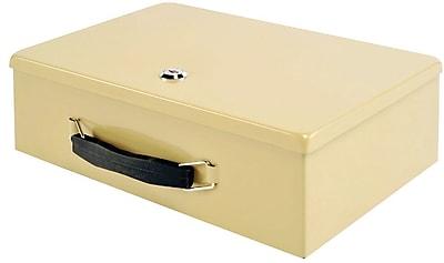 MMF Industries™ STEELMASTER® Fire Retardant Security Box, Sand