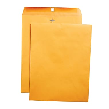 Staples Clasp Envelopes, 10
