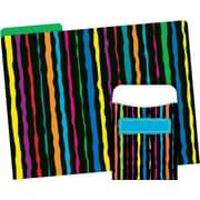Barker Creek Neon Stripe Folder & Pocket Set, 42 Pieces Per Set (BC3599)