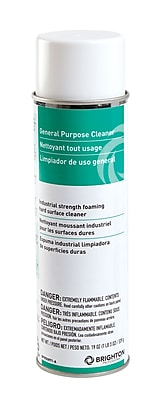 Brighton Professional™ Citrus All Purpose Cleaner, Citrus Scent, 19 Oz.