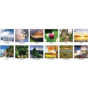 "2018 House of Doolittle 18 1/2"" x 13"" Desk Pad Calendar Earthscapes Scenic (1476)"