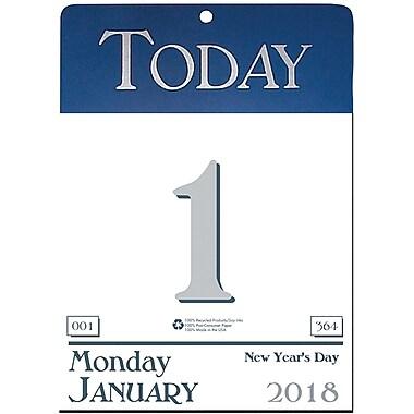 2018 House of Doolittle 6.5 x 9 Wall Calendar Today Blue (310)