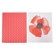 Martha Stewart Two-Pocket Folder, Letter Size, Persimmon, 2-pack (51094)