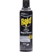 Raid Wasp and Hornet Killer, 14 oz