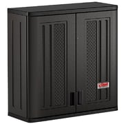 Suncast Commercial Wall Storage Cabinet (BMCCPD3000)