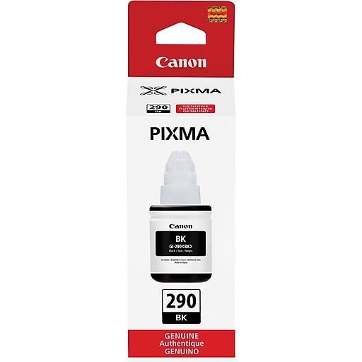 Canon GI-290 Black Ink Bottle