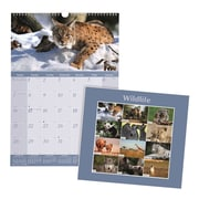 "2018 Brownline® 12"" x 17"" Monthly Wall Calendar, Wildlife Theme (C173108)"