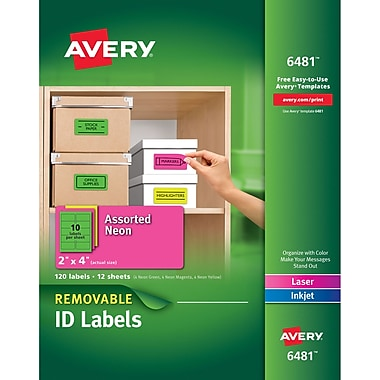 Avery® 6481 Removable Assorted Neon Organization Labels, 2