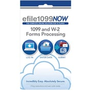 efile1099NOW, Online 1099 and W-2 Forms Processing